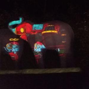 LA-Zoo-Lights-14
