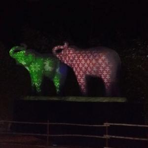 LA-Zoo-Lights-17