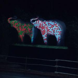 LA-Zoo-Lights-16
