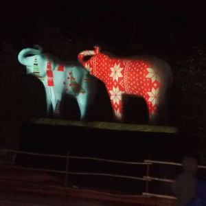LA-Zoo-Lights-15