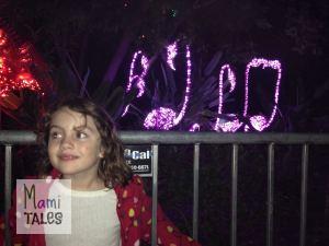 LA-Zoo-Lights-12