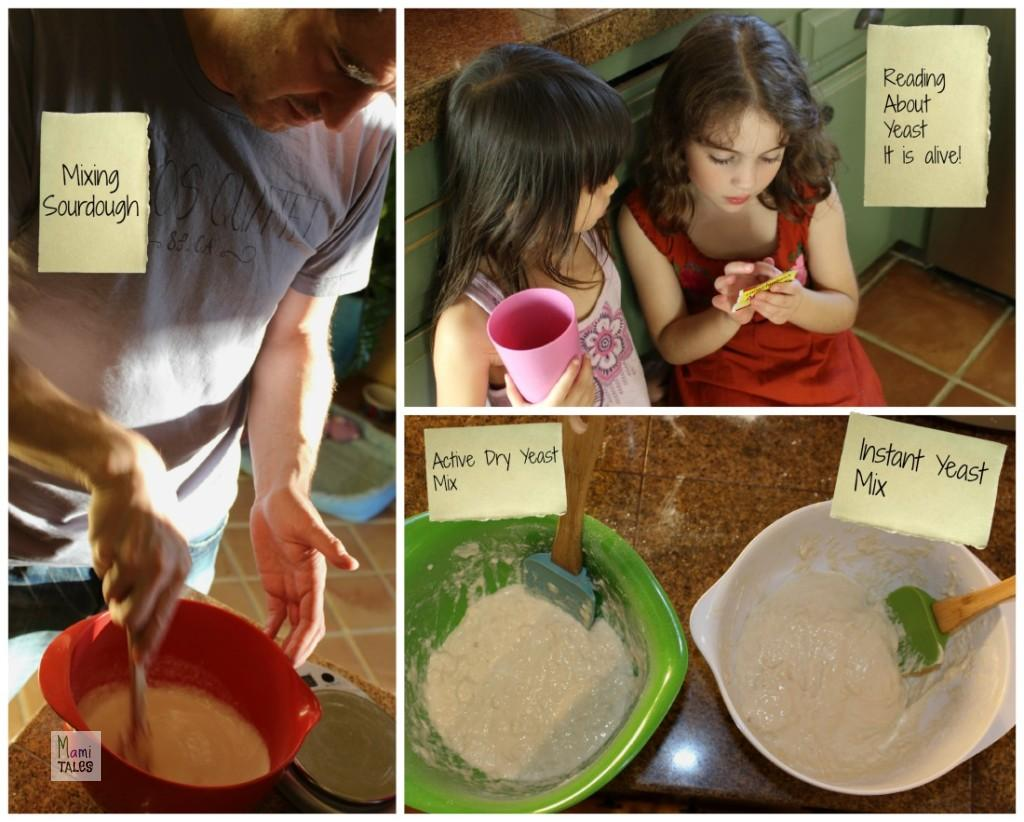 Science-of-Yeast-Mixing
